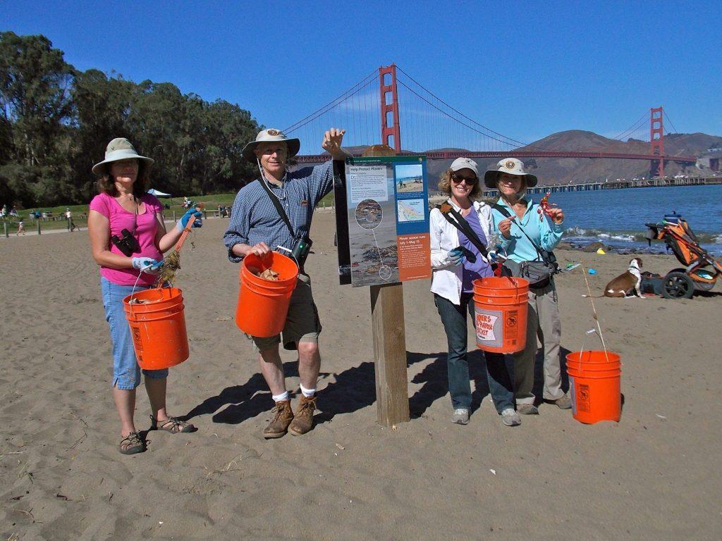Volunteers clean plover habitat