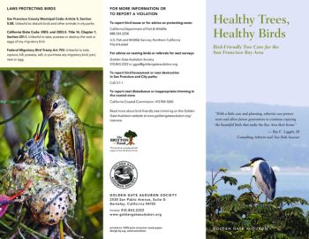 thumbnail of Healthy_Trees_brochure