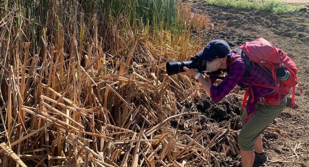 Tara McIntire in the field