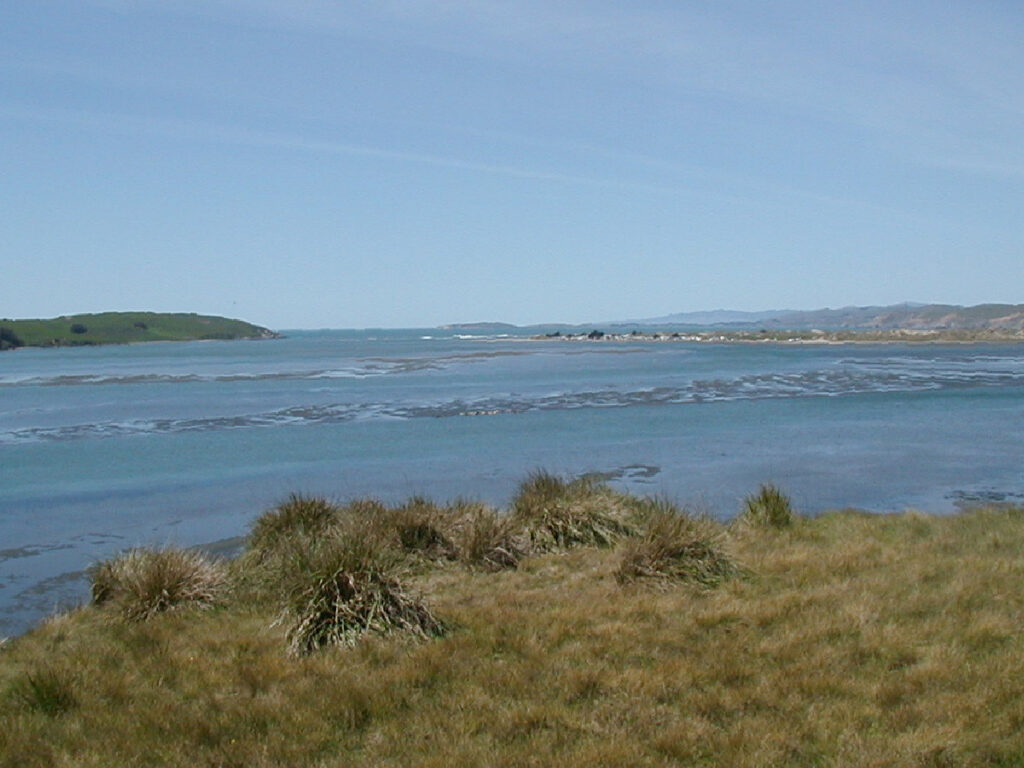 Mouth of Tomales Bay, seen from Toms Point