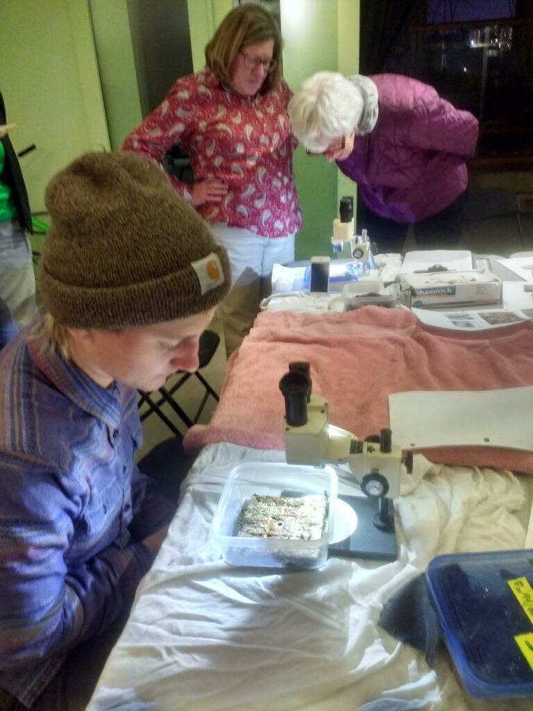 Audubon volunteers use field microscopes to count native oysters