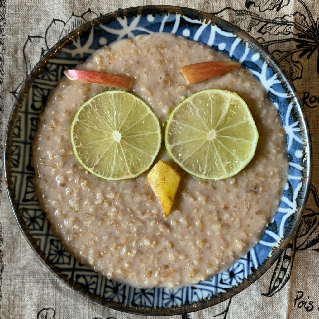 owl in oatmeal