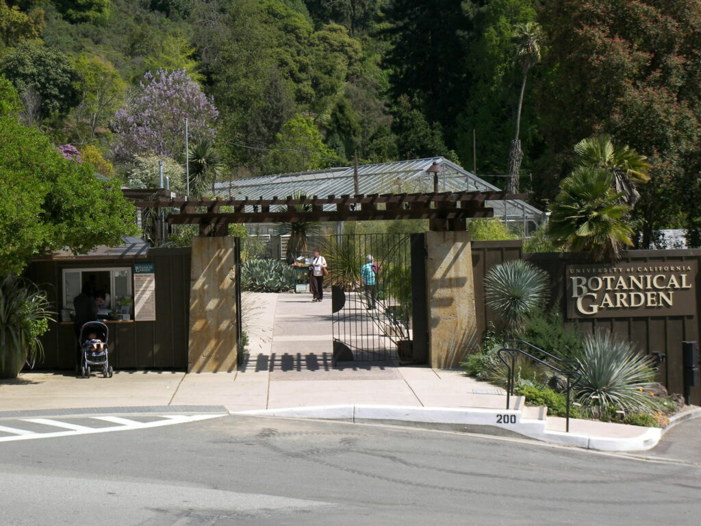 Outside the UC Berkeley Botanical Garden