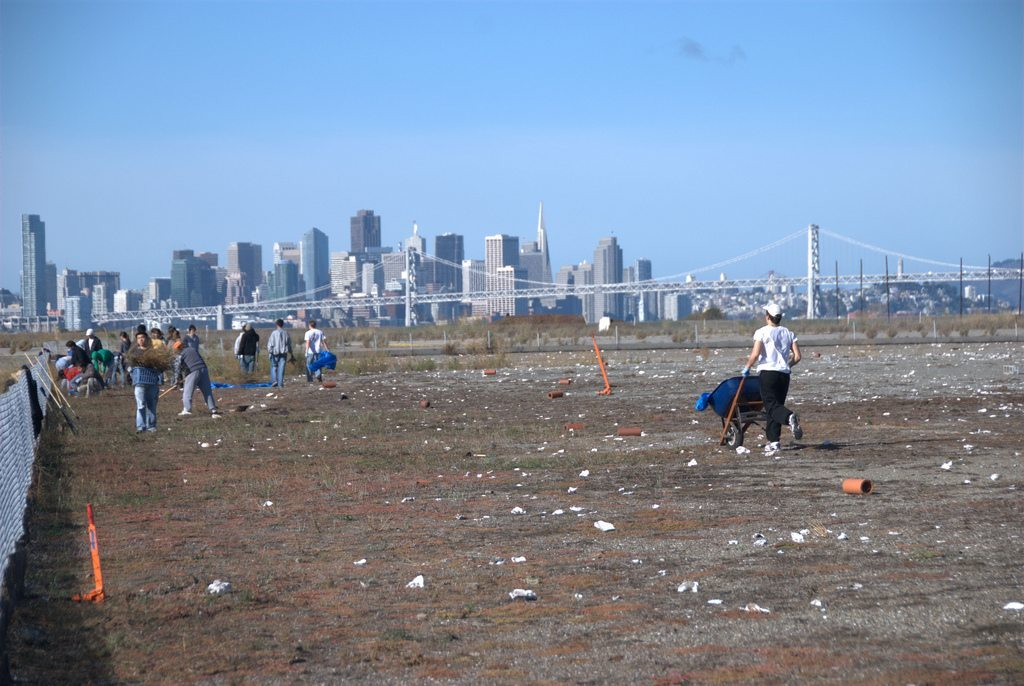 GGAS volunteers clean and prepare the tarmac nesting site for the terns'  arrival