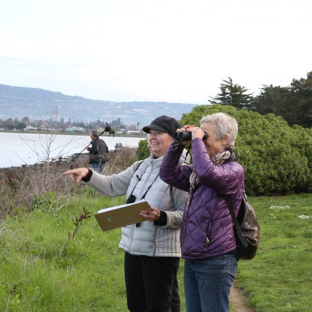 Counting on Bay Farm Island. Photo by Nancy Johnston.