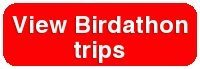 Birdathon_trips_button