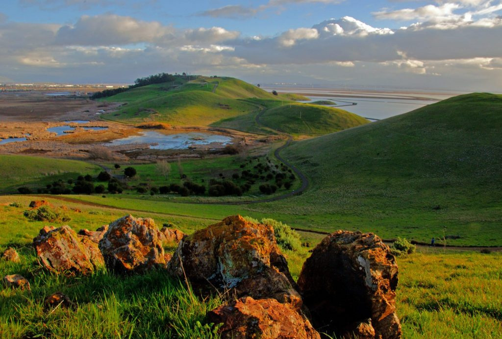 Coyote Hills during a spring sunset / Photo by Jerry Ting