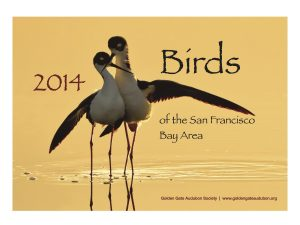 2014 Birds of the SF Bay Calendar