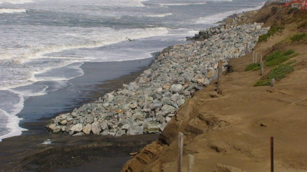 Rock revetment covering Bank Swallow nesting sites at Ocean beach