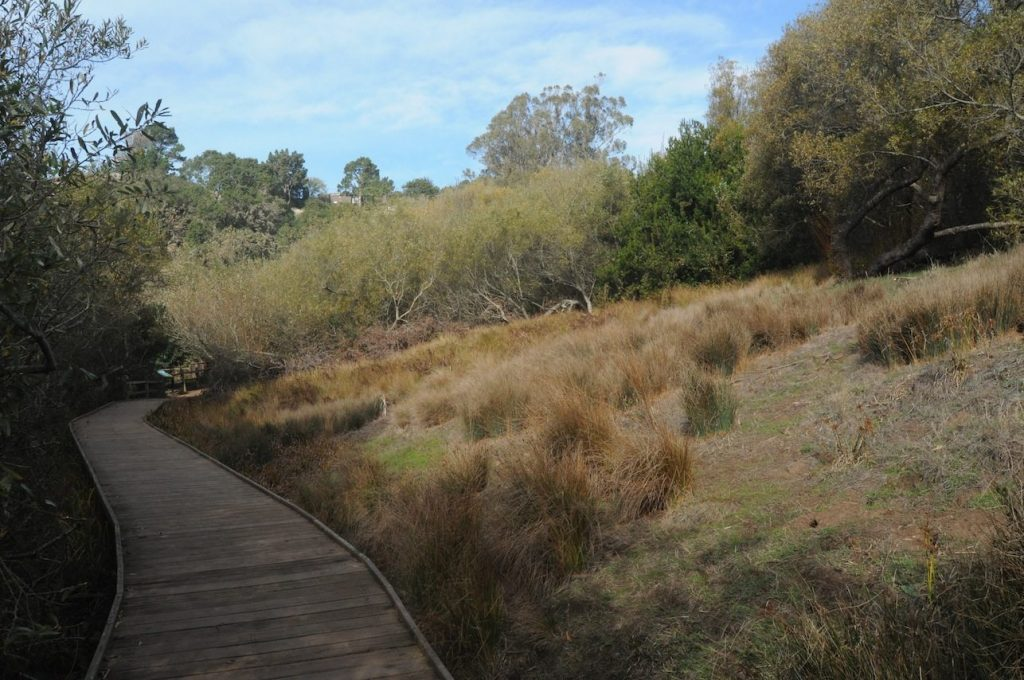 Glen Canyon boardwalk and marshy area, by Alan Hopkins