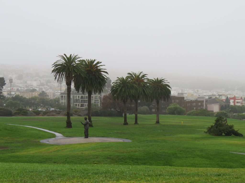 Fort Mason's Great Meadow in the fog / Photo by David Assmann