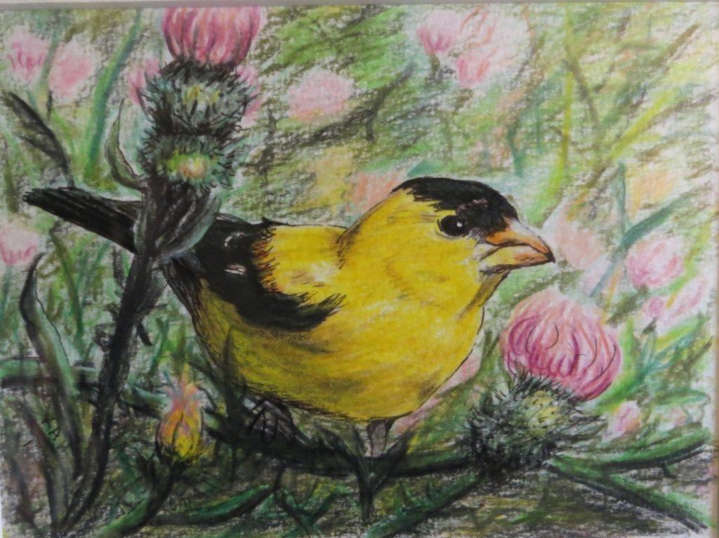 American Goldfinch by Keith Harward