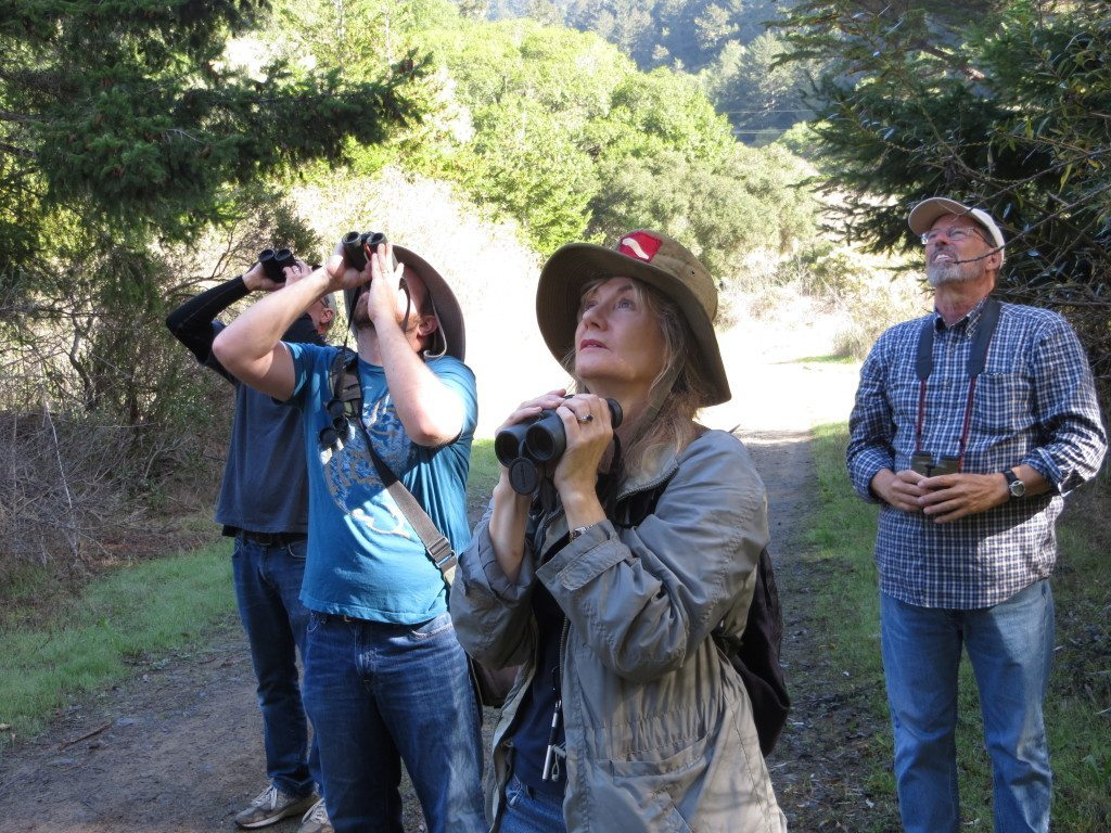 Master Birders near Bolinas / Photo by Ilana DeBare