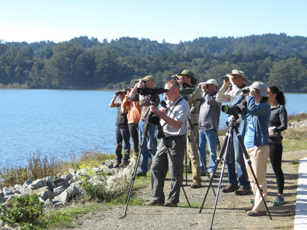 Master Birders at Bolinas Lagoon / Photo by Ilana DeBare