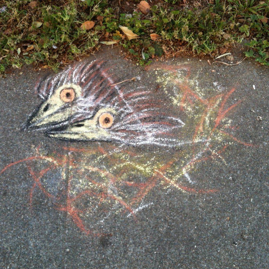 Night-Heron chicks