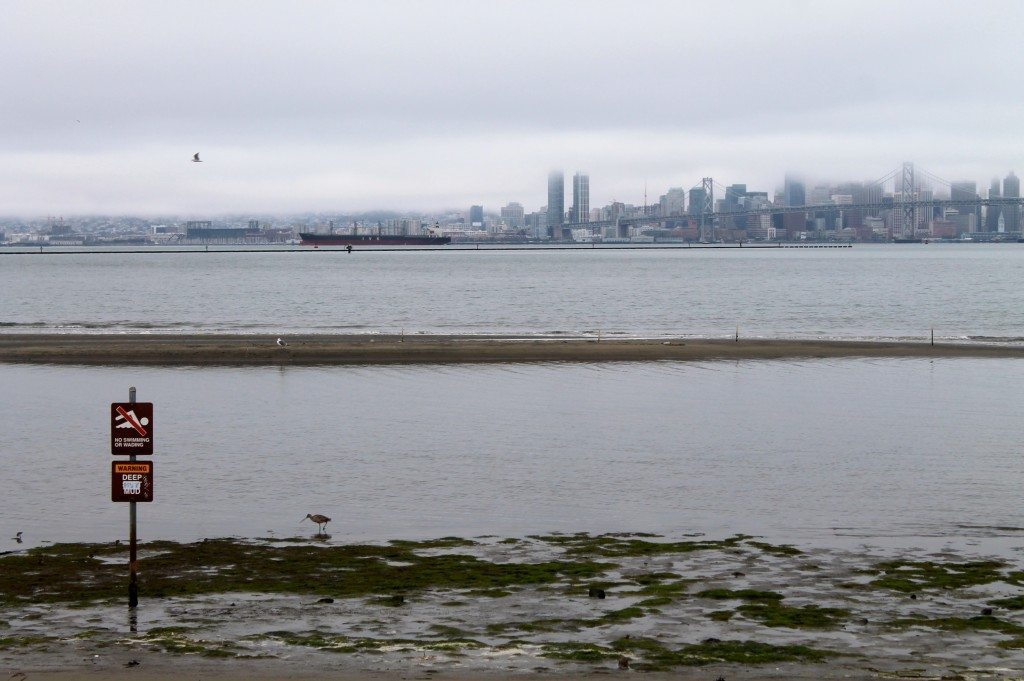 Rising tide at Middle Harbor Shoreline Park, looking west towards San Francisco / Photo by Ilana DeBare