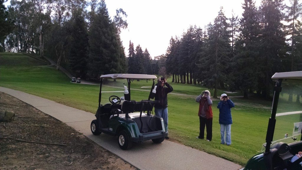 Birding by golf cart at Sequoyah Country Club / Photo by Lori Lewis