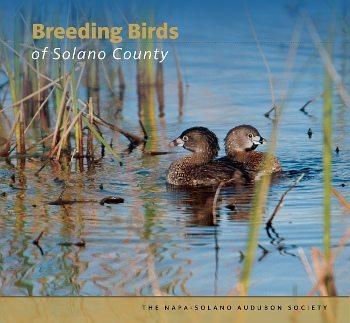 Breeding Birds of Solano County cover
