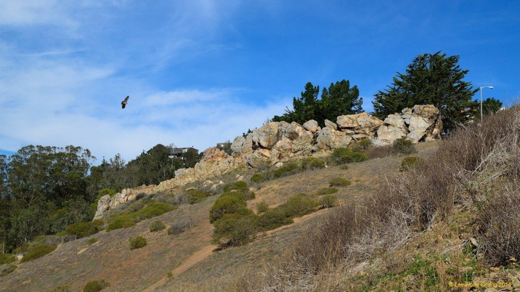 Rock outcropping summit with Red-tailed Hawk, by Lee Hong Chang