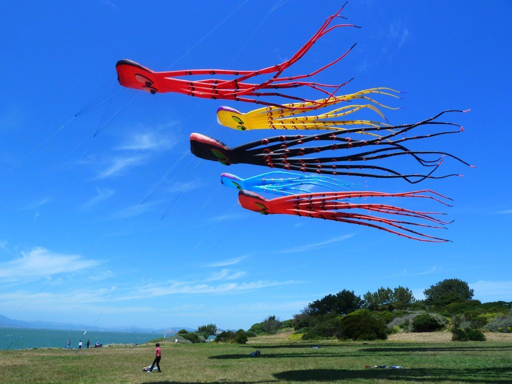 Kite flying is popular at Cesar Chavez Park. Note the ridge with native vegetation in back. Photo by Martin Nicolaus.